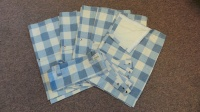 Bay Window 10 piece - rear set - Blue check